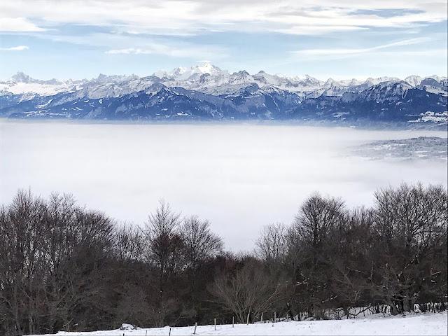 Vue sur la chaîne des Alpes au Mont Salève