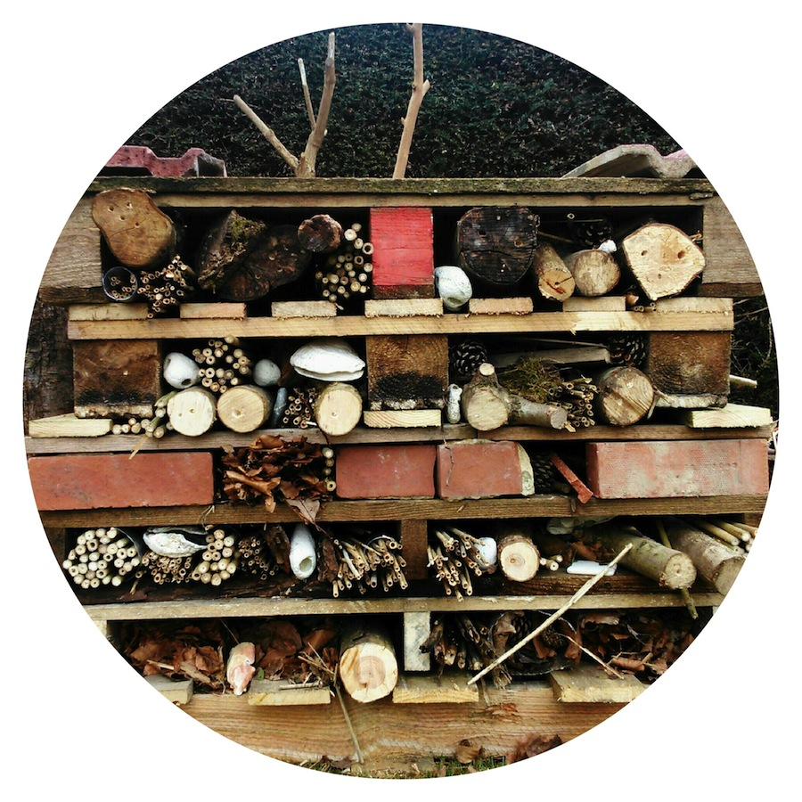Beach House Park Bug Hotel