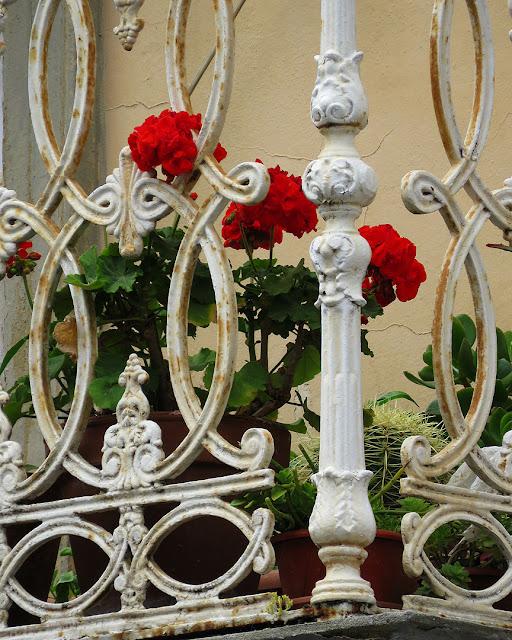 Fiori sul terrazzo, via Paoli, Livorno