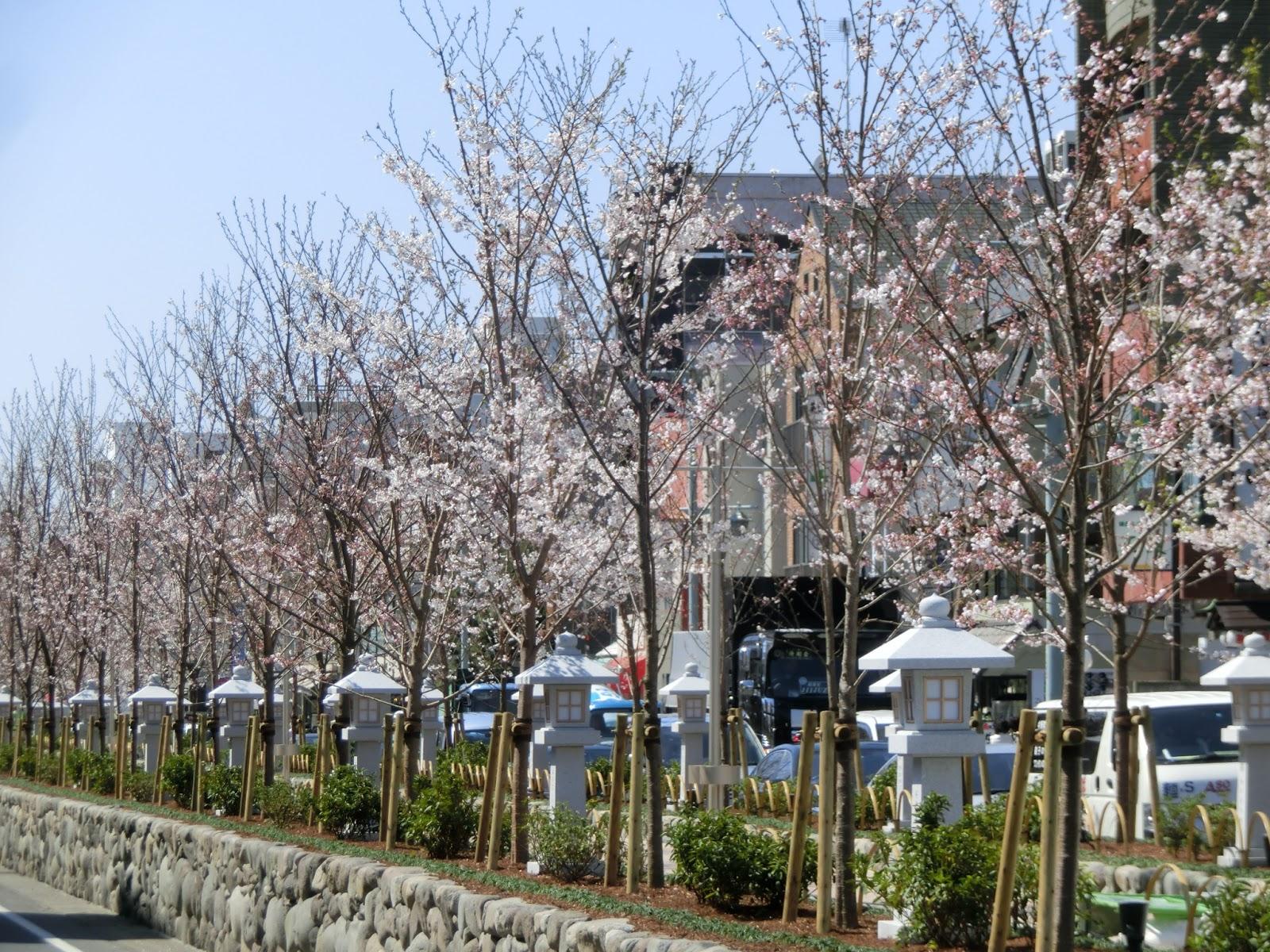 okadoのブログ・・・鎌倉散策の...
