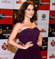 Elli Avram Walk the Red Carpet of Zee Awards 2017i ~  Exclusive Galleries 027.jpg