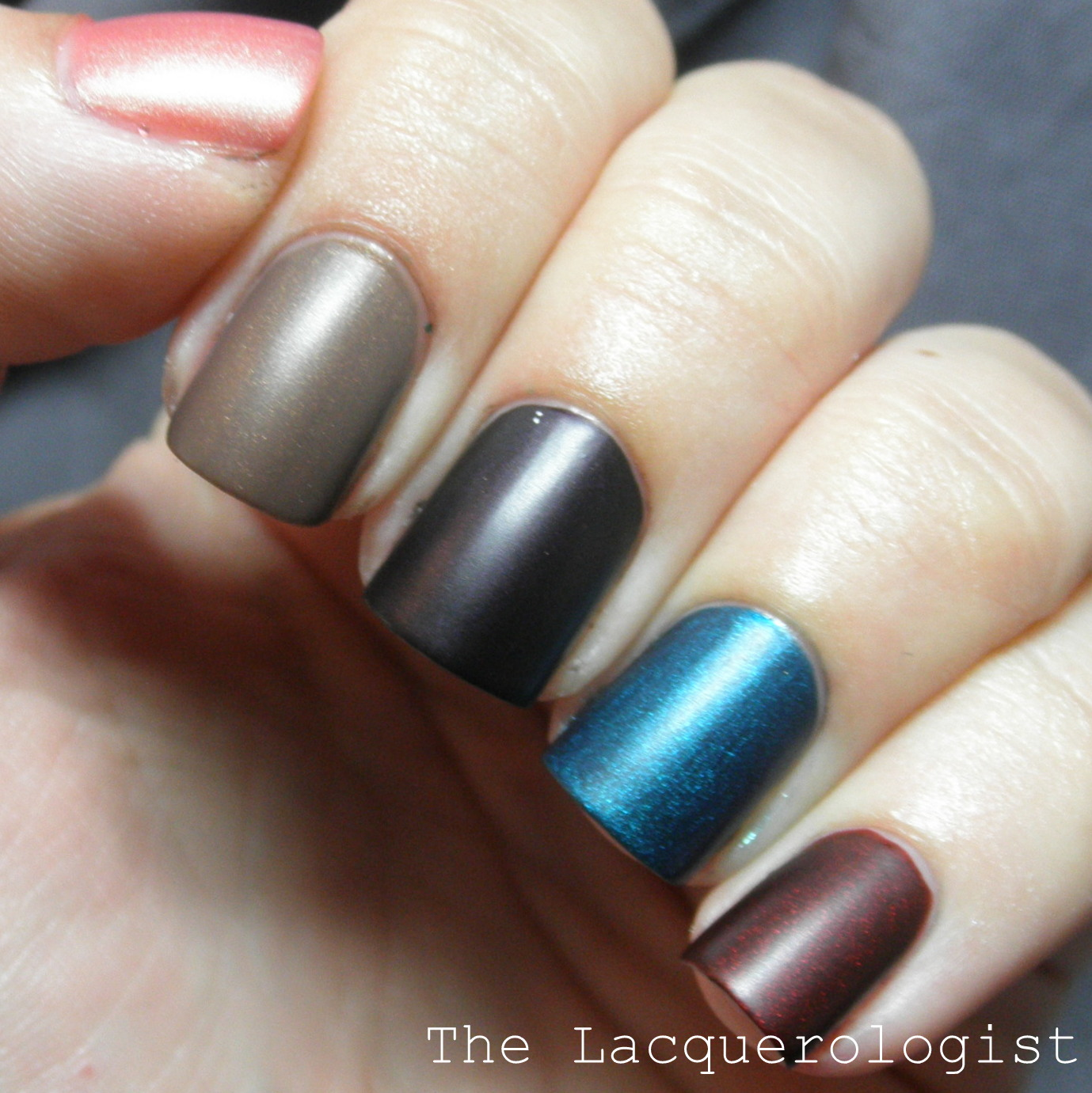 Salon Perfect First Look Fall Polish Forecast Collection: Swatches ...