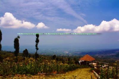 View Sekitar Puncak Posong, kalau beruntung cerah dapat dilihat 8 gunung