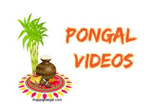 pongal videos