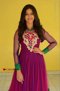 Actress Pooja Jhaveri Latest Stills in Purple Salwar Kameezt at Dwaraka Success Meet  0097.JPG
