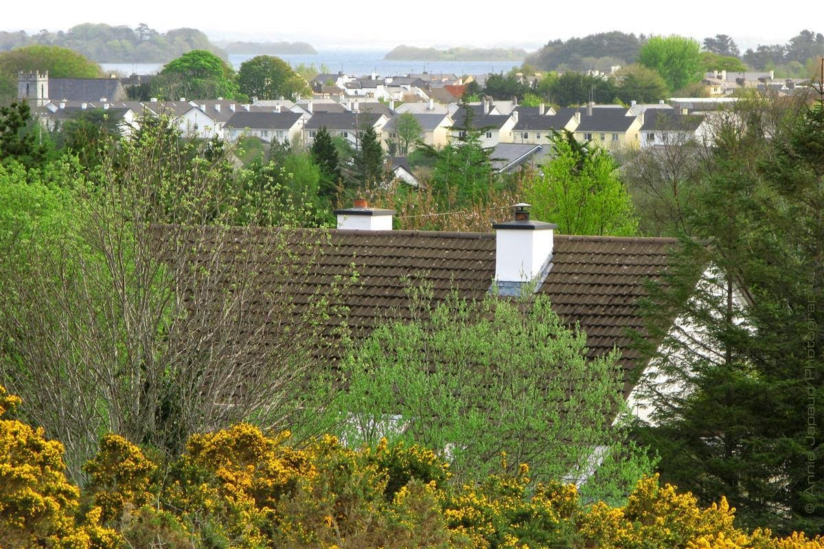 spring view of Oughterard