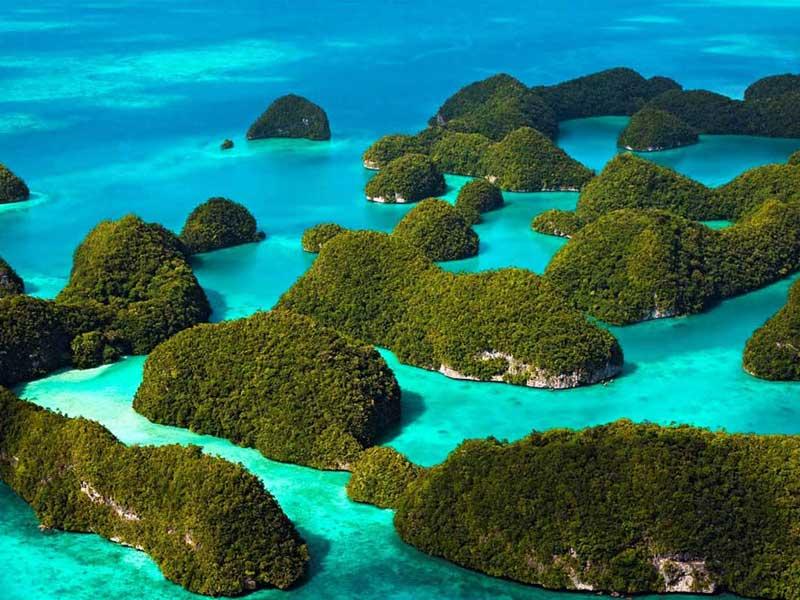 Best Diving Island Philippines