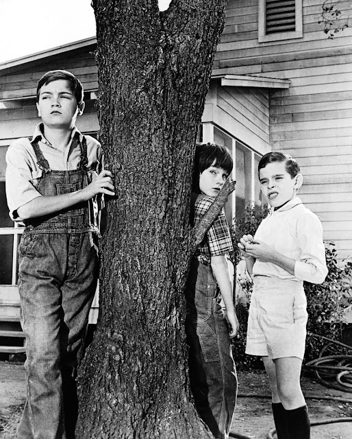 How do Scout, Jem and Dill characterize Boo Radley at the beginning of To Kill a Mockingbird?