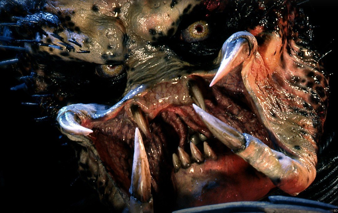 Trailers: New Trailer For The Predator