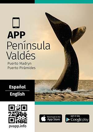 App Guide for Valdes Peninsula
