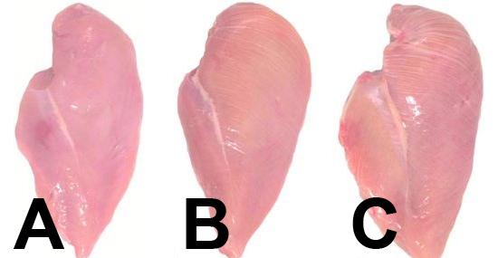 Tirinha branca no peito de frango pode revelar qualidade da carne - Capa