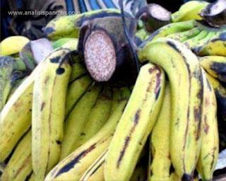 pisang ambon putih