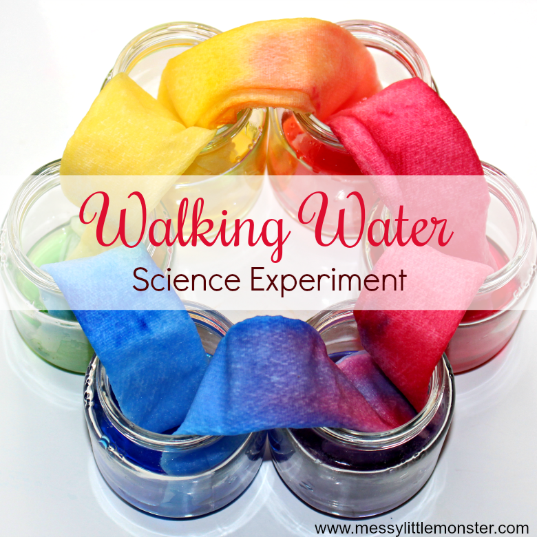 Rainbow walking water science experiment for kids. An easy science project for kids with free printable walking water worksheet. This walking rainbow experiment is perfect for preschoolers learning about colour mixing.