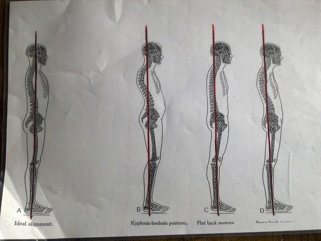 suora selkä
