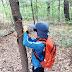 유네스코 학교 안현초 '나무에게 하고 싶은 말'