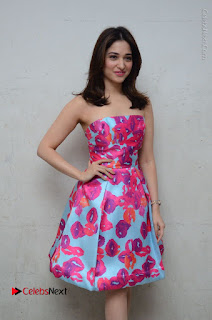 Actress Tamanna Latest Images in Floral Short Dress at Okkadochadu Movie Promotions  0060.JPG