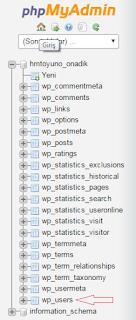 wp şifresini değiştirme
