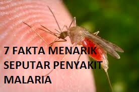 7 Fakta Menarik Malaria Yang Perlu Anda Ketahui