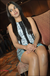Catherine Tresa Pos at Iddarammayilatho Platinum Disc Function  0004.jpg