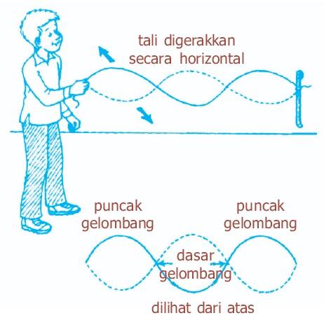 Gelombang Transversal Dan Longitudinal Perbedaan Contoh Rumus