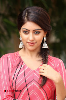 Anu Emmanuel looks super cute homely girl in peach dress at Majnu Success Meet
