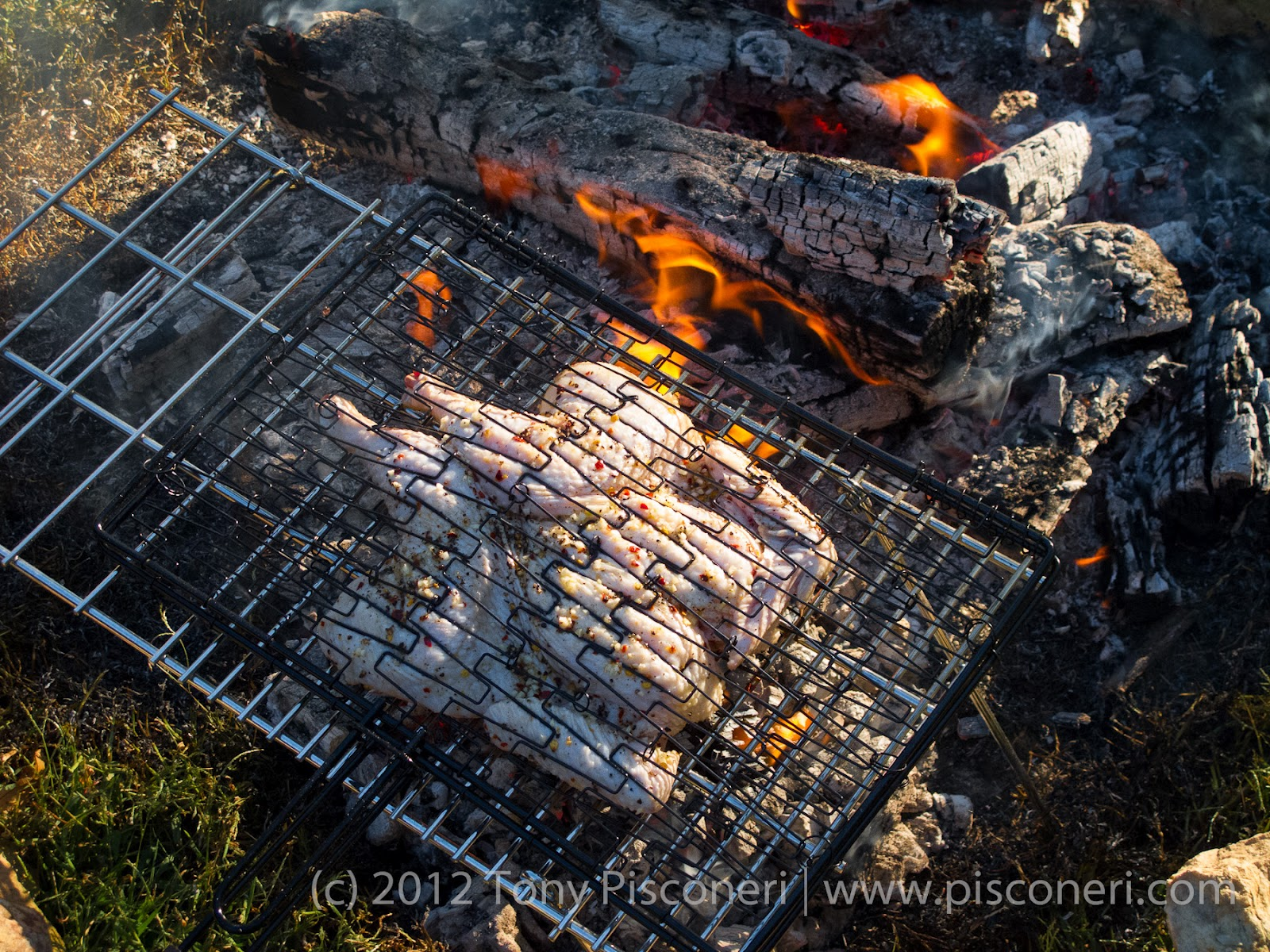 Chef Tony Pisconeri Pasture Raised Chicken And Open Hardwood Fire Pit Cooking