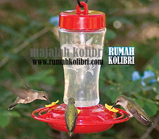 cara memilihnektar yang bagus buat kolibri ninja