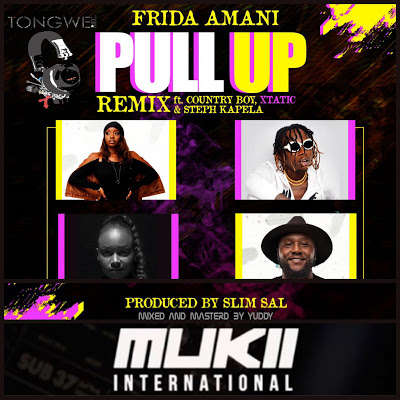 Frida Amani Ft.Country Boy Pull Up Remix