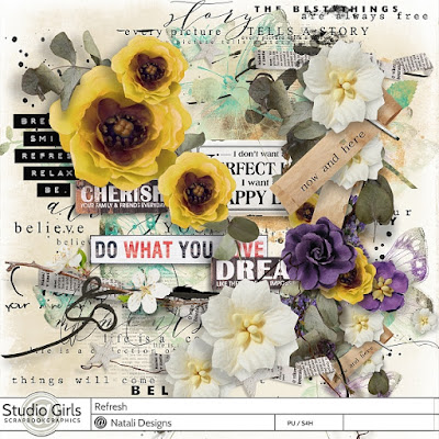 http://shop.scrapbookgraphics.com/refresh-overlays.html