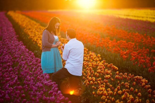 Propose Day Images 2017 Exclusive Collection