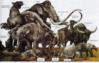 ¿Nos sigue afectando la desaparición de la megafauna hace decenas de miles de años?