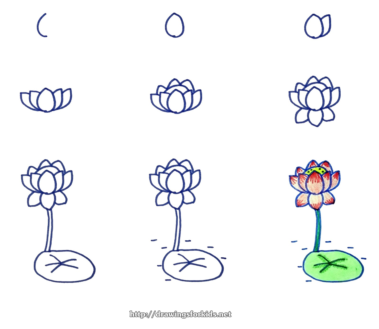 How To Draw A Lotus Flower Step By Step Drawingsforkids