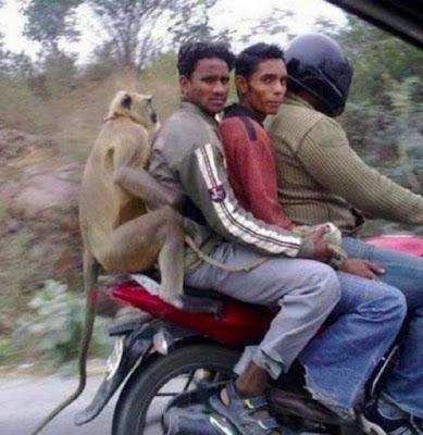 NGAKAK !! Foto Kelakuan Konyol Orang India Ini Bakal Bikin Kamu Ketawa Tanpa Henti
