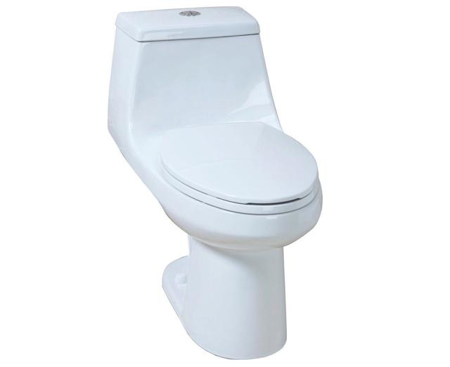 Glacier Bay 1 Piece Dual Flush Toilet Review