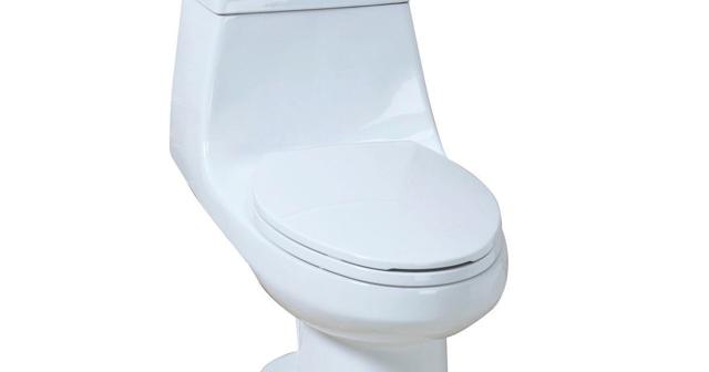 Everything Toilets Glacier Bay 1 Piece Dual Flush