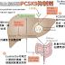 [臨床藥學] 高血脂治療新藥 PCSK9抑制劑 (PCSK9 inhibitors)