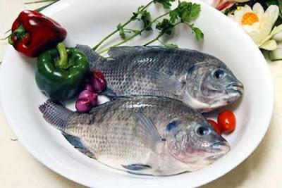 Lưu ý các bà nội trợ khi sử dụng cá Rô phi