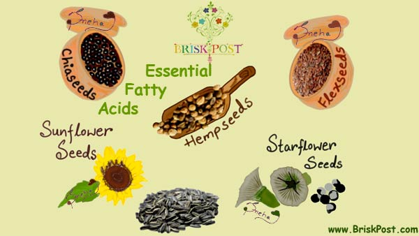 Essential Fatty Acids illustration by sneha: EFA rich food sources flaxseed, chiaseed, hempseed, sunflower seed, starflower seed