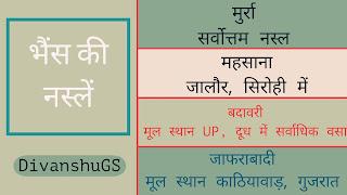 राजस्थान में पशुधन