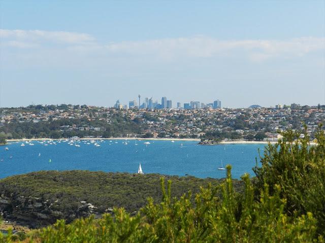 Manly e grattacieli di Sydney sullo sfondo