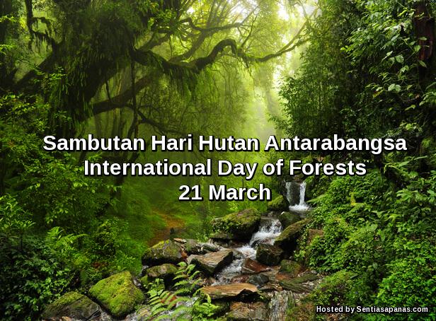 Hari Hutan Antarabangsa