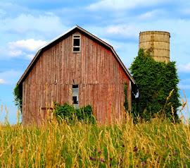 Barns And Their Beauty