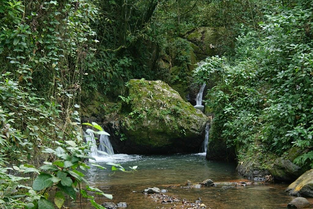 La Map Yunque Puerto El El Central Nacional Parque Cordillera Rico