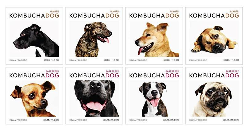 Canine Holistic Dog Food