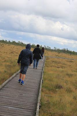 Nationalpark Store Mosse - Wandern mit gehfaulen Kindern