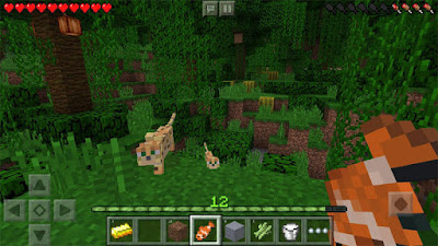 Download Minecraft Pocket Edition  v1.2.7.2 + Mod