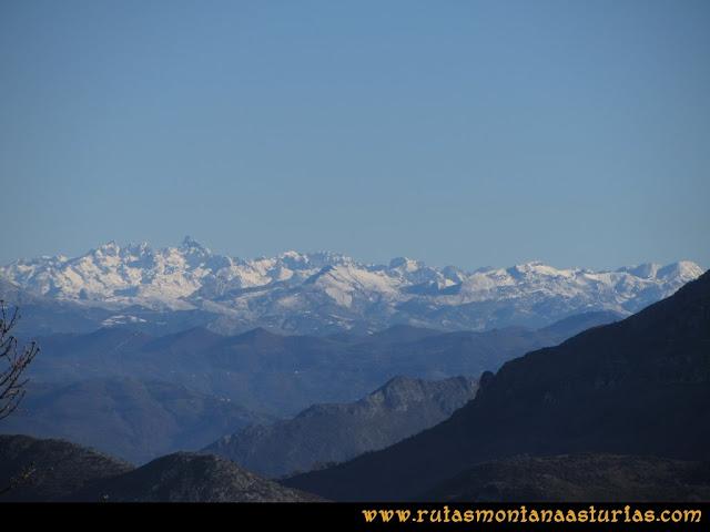 Area Buyera, picos Grandamiana y Plantón: Vista desde el Grandamiana a los Picos de Europa