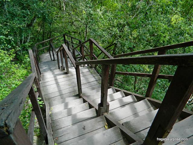 Escadaria que leva ao topo do Templo IV, em Tikal, Guatemala