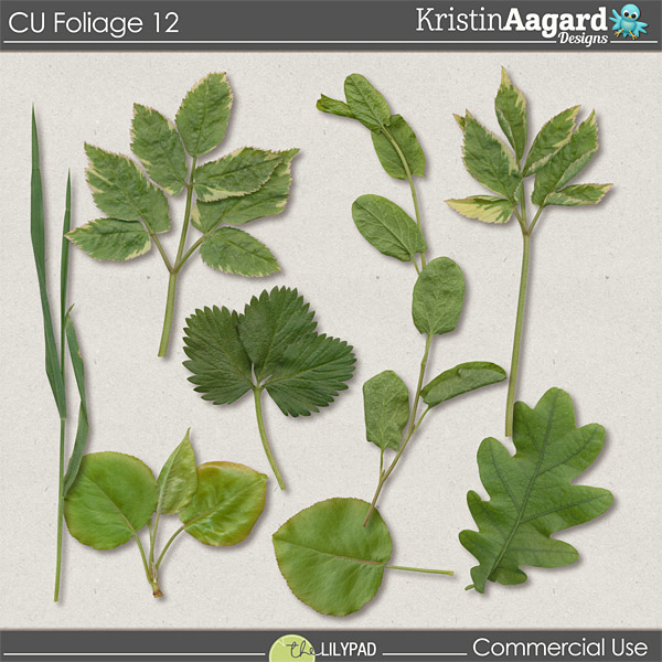 http://the-lilypad.com/store/Digital-Scrapbook-Design-Tools-CU-Foliage-12.html