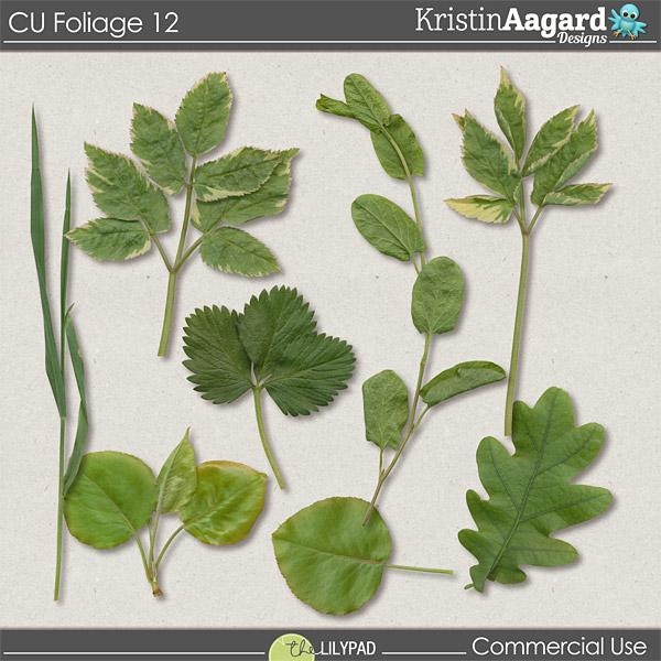 http://the-lilypad.com/store/Digital-Scrapbook-Design-Tools-CU-Foliage-12.html